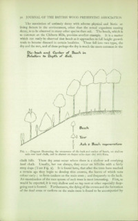 Journal of the British Wood Preserving Association Vol IV : Page 64