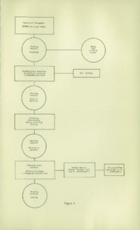 Record of the 1952 Annual Convention of the British Wood Preserving Association : Page 127