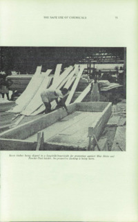 Record of the 1966 Annual Convention of the British Wood Preserving Association : Page 85