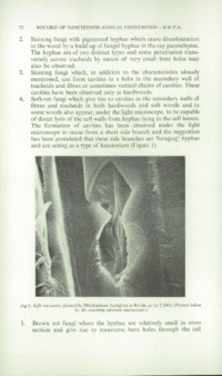 Record of the 1969 Annual Convention of the British Wood Preserving Association : Page 82