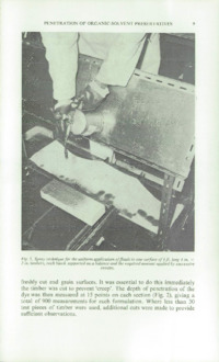 Record of the 1970 Annual Convention of the British Wood Preserving Association : Page 19