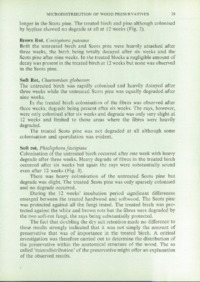 Record of the 1976 Annual Convention of the British Wood Preserving Association : Page 37