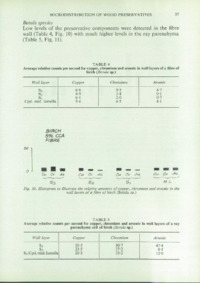 Record of the 1976 Annual Convention of the British Wood Preserving Association : Page 45
