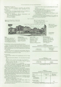 Record of the 1987 Annual Convention of the British Wood Preserving Association : Page 19