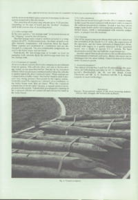 Record of the 1988 Annual Convention of the British Wood Preserving Association : Page 69