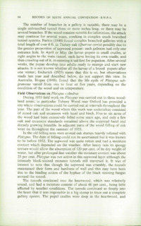 Record of the 1956 Annual Convention of the British Wood Preserving Association : Page 102