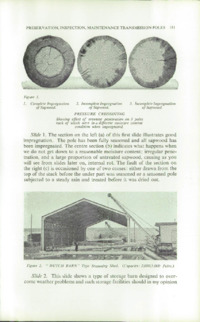 Record of the 1956 Annual Convention of the British Wood Preserving Association : Page 189