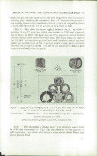 Record of the 1956 Annual Convention of the British Wood Preserving Association : Page 193