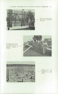 Record of the 1958 Annual Convention of the British Wood Preserving Association : Page 29