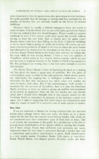 Record of the 1958 Annual Convention of the British Wood Preserving Association : Page 91