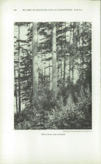 Record of the 1961 Annual Convention of the British Wood Preserving Association : Page 178