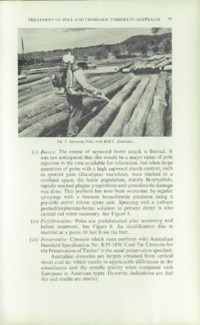 Record of the 1961 Annual Convention of the British Wood Preserving Association : Page 87