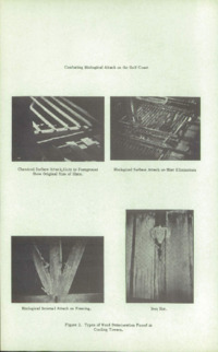 Record of the 1963 Annual Convention of the British Wood Preserving Association : Page 42