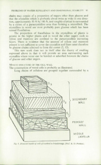 Record of the 1964 Annual Convention of the British Wood Preserving Association : Page 107