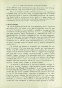 Record of the 1977 Annual Convention of the British Wood Preserving Association : Page 245