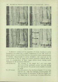 Record of the 1977 Annual Convention of the British Wood Preserving Association : Page 248