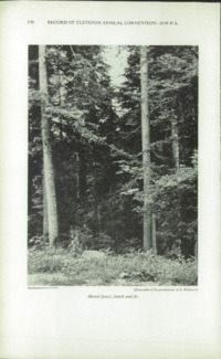 Record of the 1961 Annual Convention of the British Wood Preserving Association : Page 180