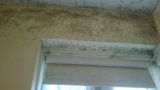 Condensation-Black-Mould-around-window-2