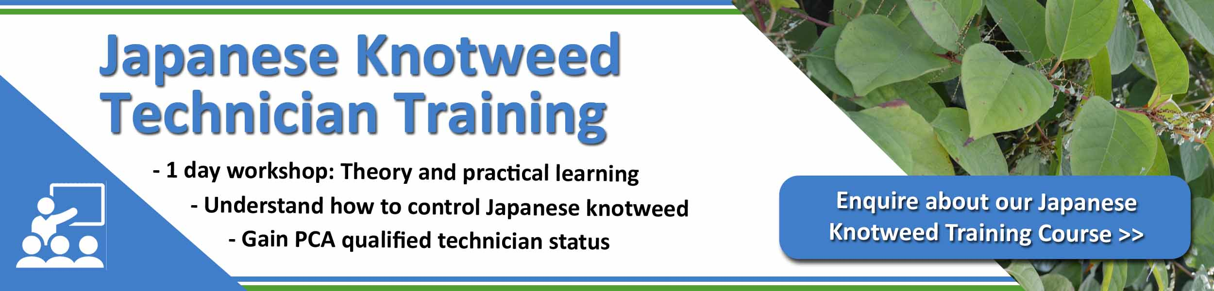 Japanese Knotweed Technician Training