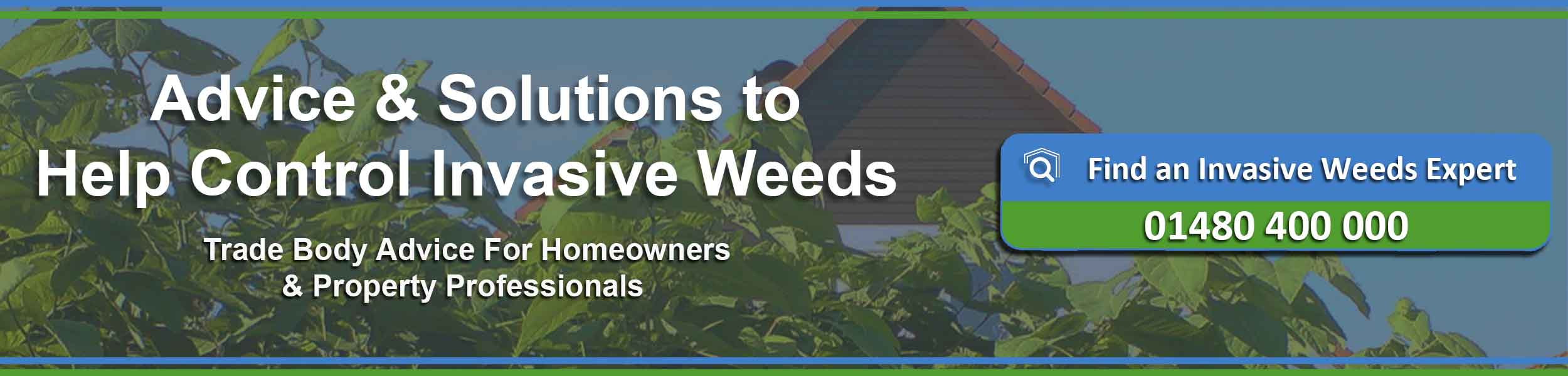 Invasive weeds - help and information
